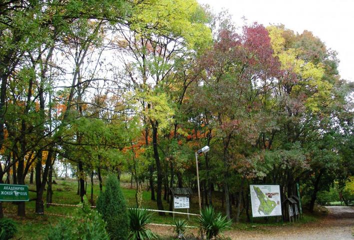 Университетский ботанический сад «Экопарк»