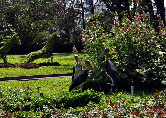 Зоопарк «Сайгон»