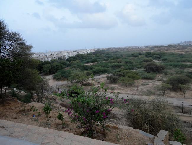 Парк Сафари