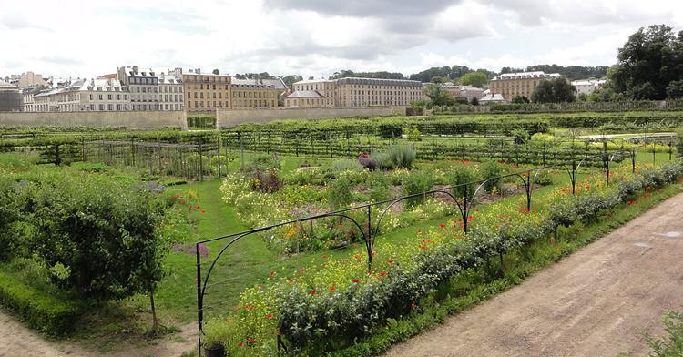 Королевский огород