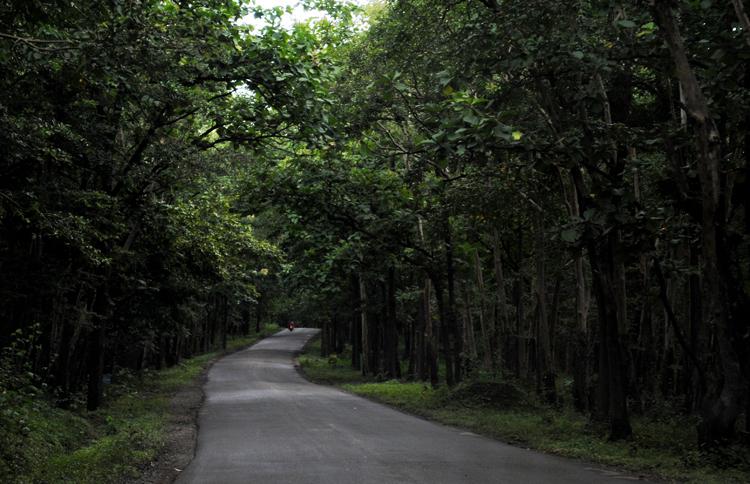 Национальный парк Анши