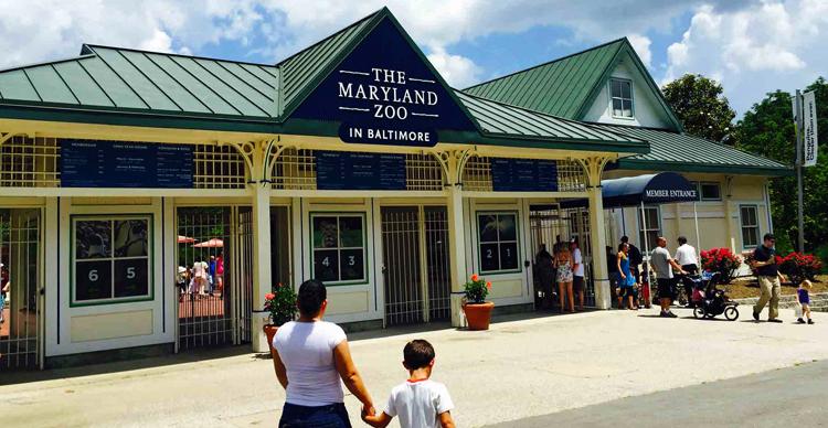 Зоопарк Мэриленда в Балтиморе
