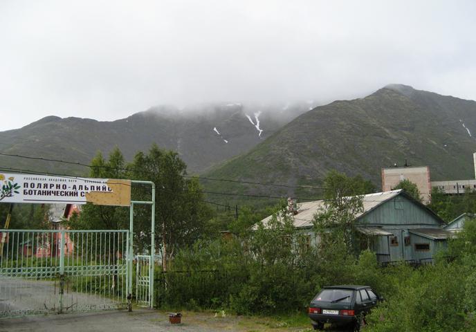 Полярно-альпийский ботанический сад-институт