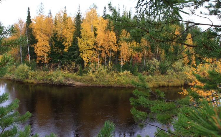 Природный парк «Сибирские увалы»