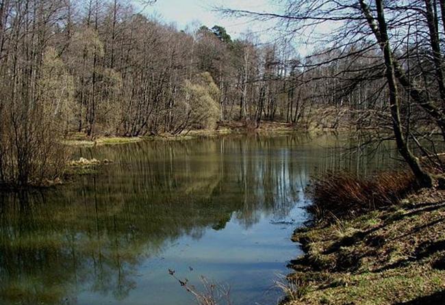 Вишняковский пруд