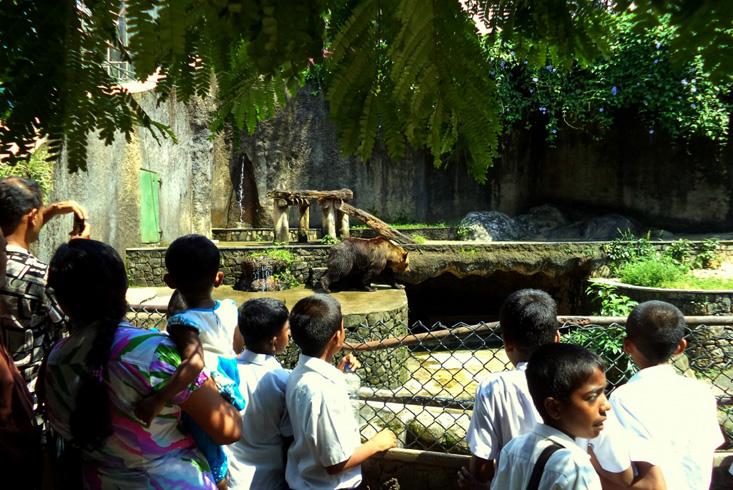 Зоологический сад Дехивала