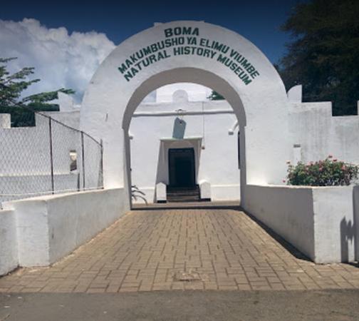 Музей естественной истории в Аруше