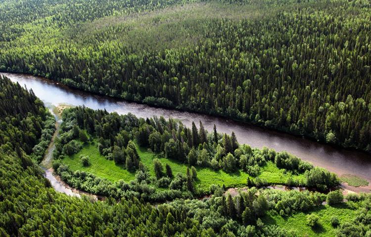 Печоро-Илычский биосферный заповедник