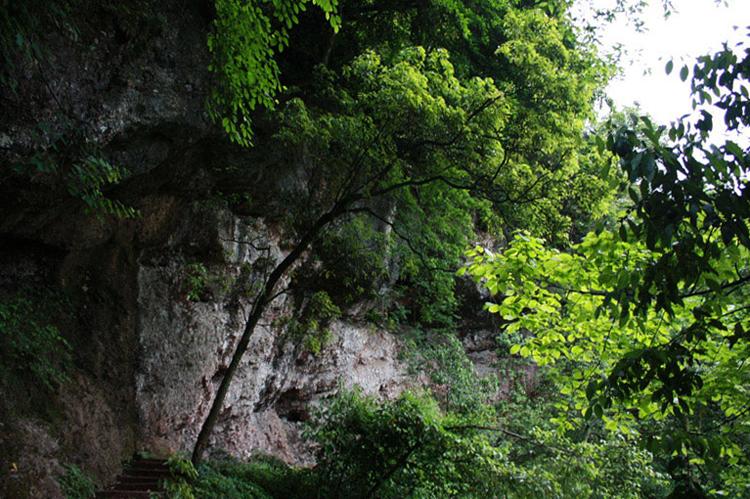 Гора Цинчэншань