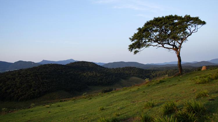 Национальный парк «Хортон Плейнс»