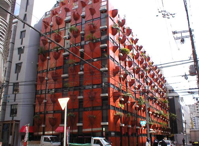Organic Building