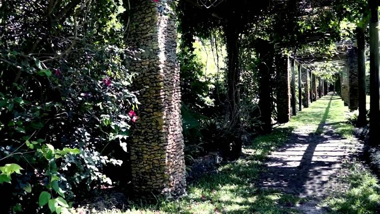 Тропический ботанический сад Fairchild