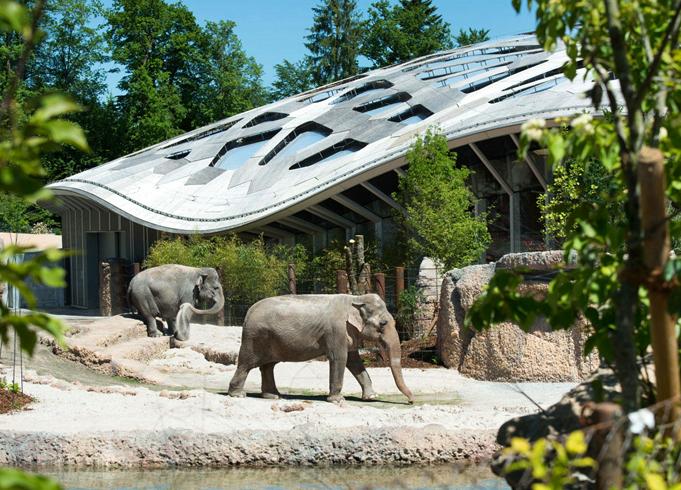 Зоопарк Цюриха