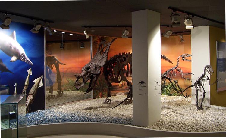 Внутри палеонтологического музея
