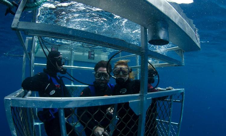 Нептуновые острова