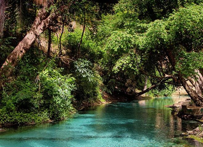 Национальный парк Янкари