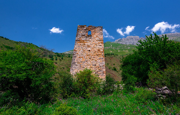 Башня усадьбы Дудара