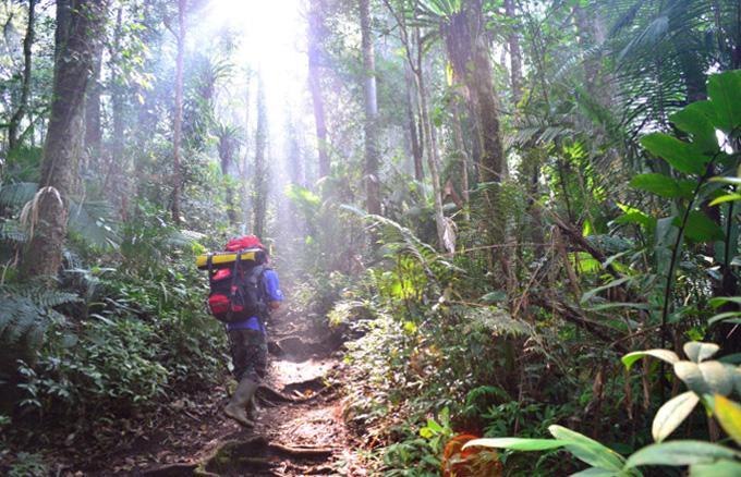 Национальный парк Kerinci Seblat