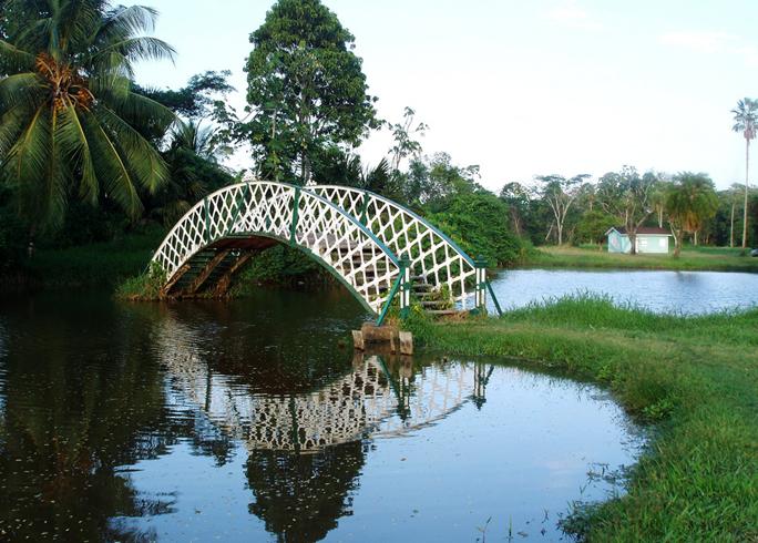 Ботанический сад Джорджтауна