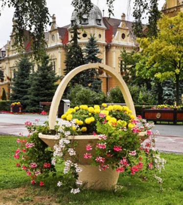Памятник участникам Брашовского восстания