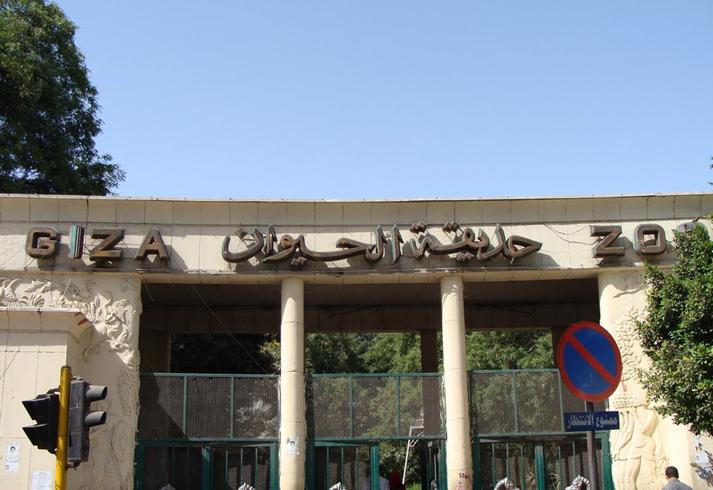 Зоопарк Гизы