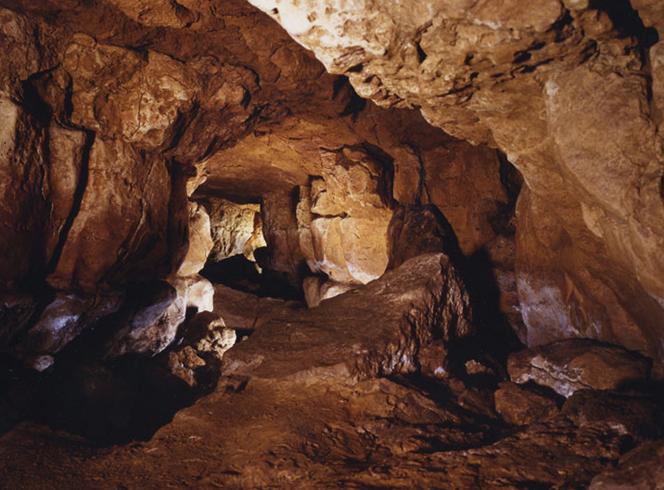 Пещеры Альтамира