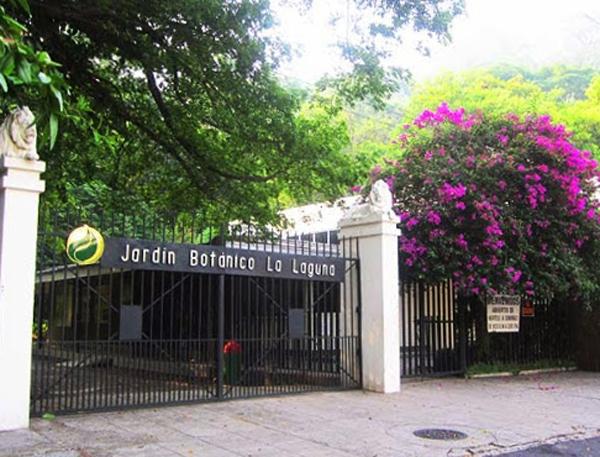 Ботанический сад «Plan De La Laguna»