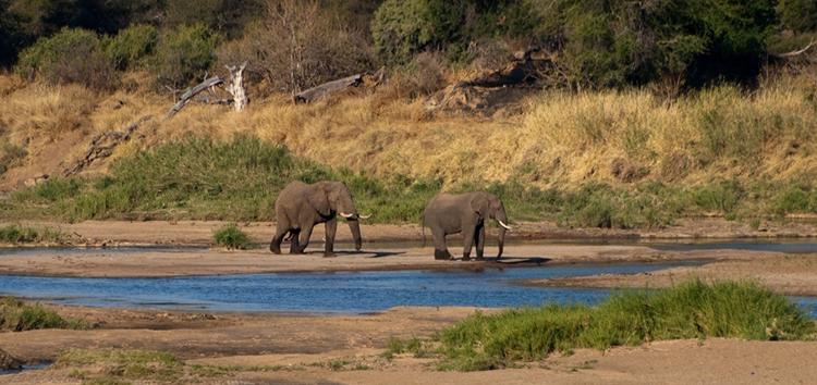 Национальный парк Мапунгубве