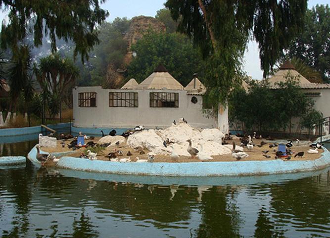 Зоопарк Бен Акну