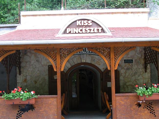Винодельня Kiss Pinceszet