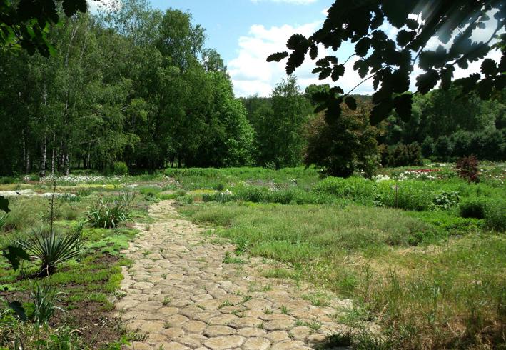 Ботанический сад Академии науки Молдавии
