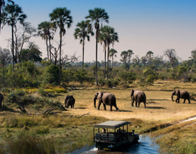Главные достопримечательности Ботсваны