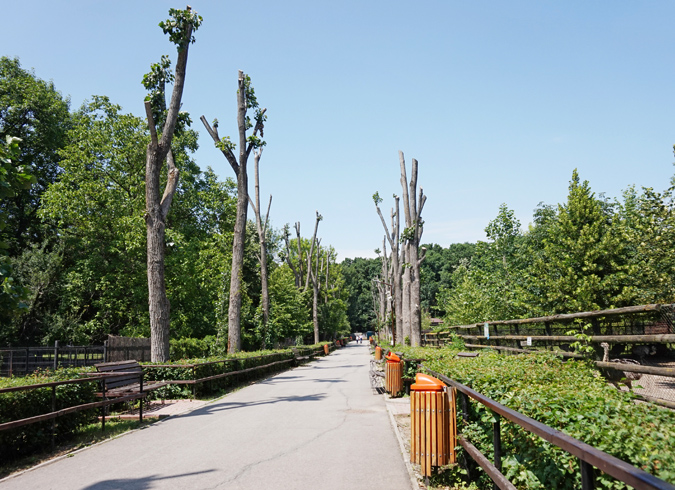 Зоопарк Бэняса