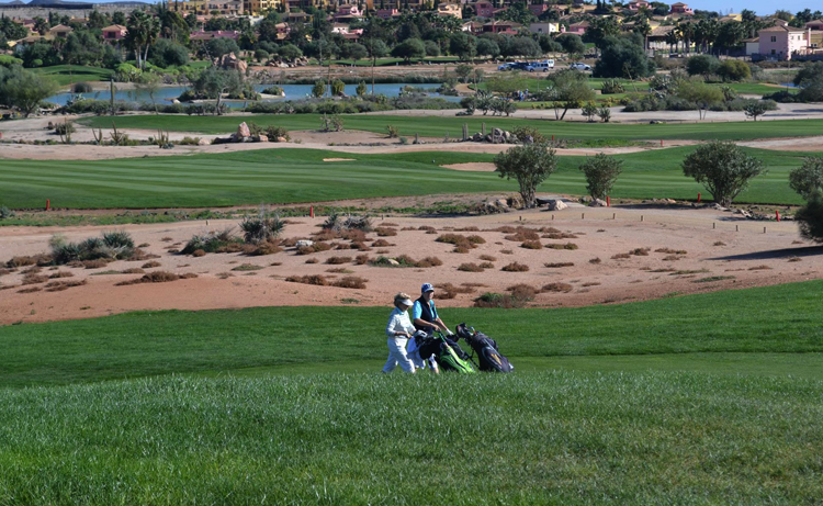 Гольф-клуб Desert Springs
