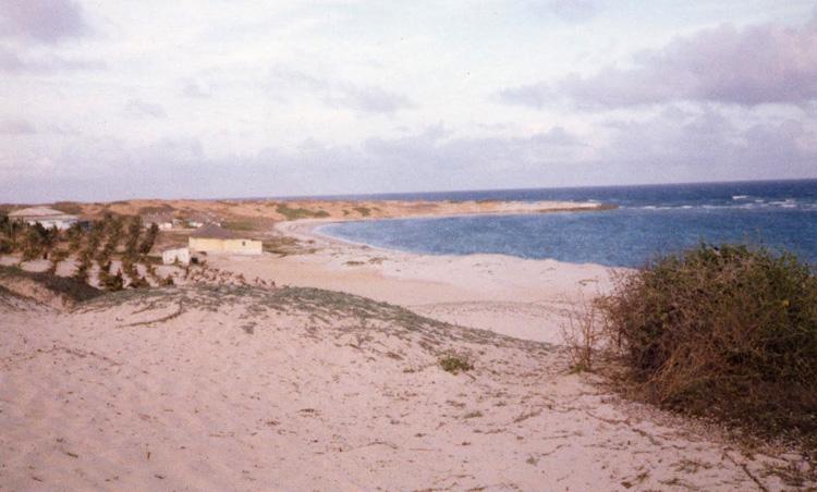 Пляж Синбуси