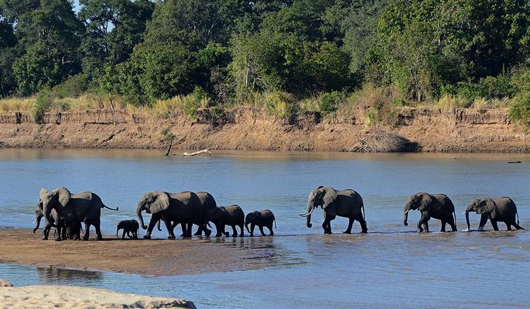 Национальный парк Южная Луангва