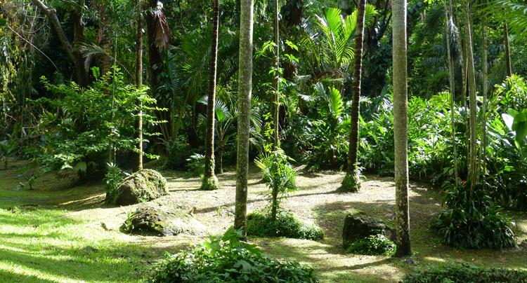 Сад Спящего Великана
