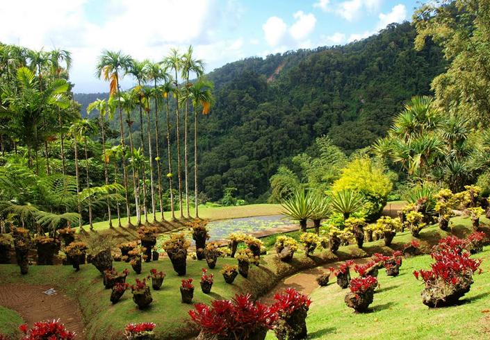Ботанический сад Балата