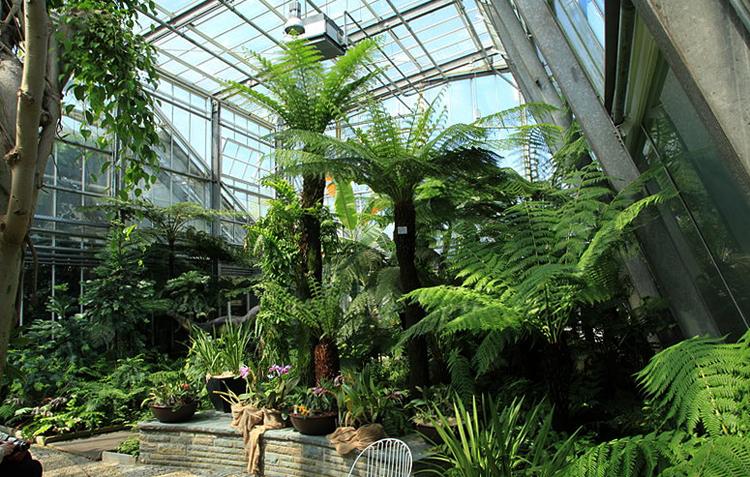 Ботанический парк «Ромберг»