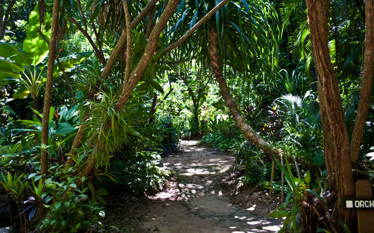 Ботанические сады Карамбола