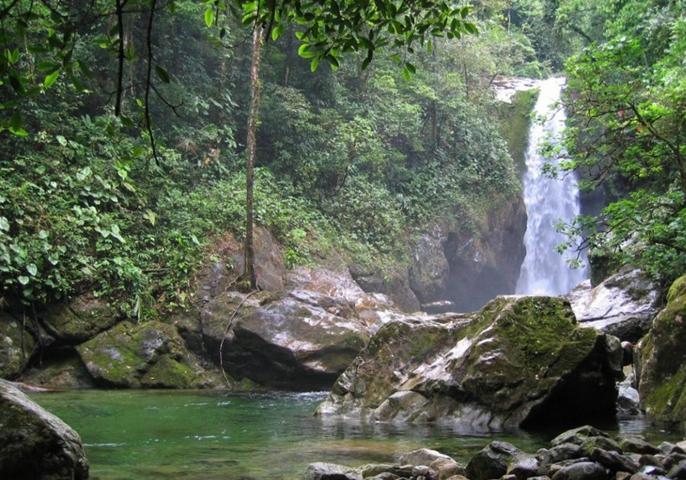 Национальный парк Пико Бонито