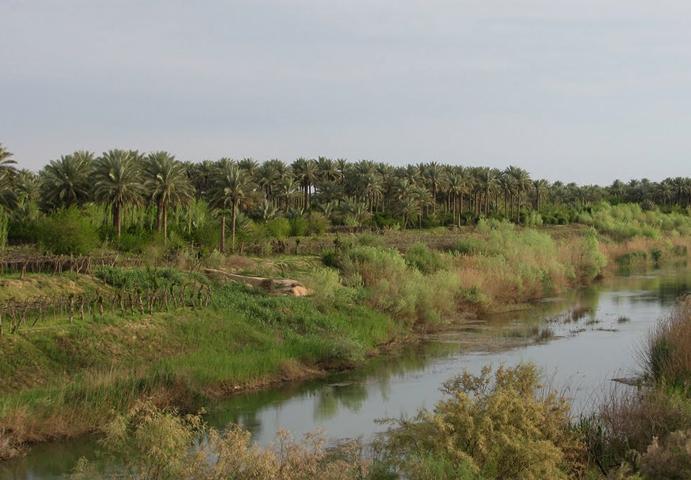 Река Дияла