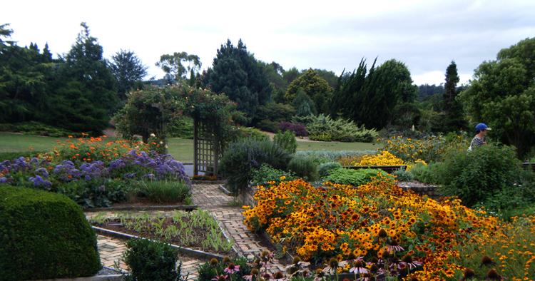 Ботанический сад Окленда