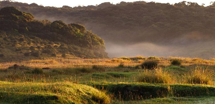 Национальный парк Хортон Плэйс