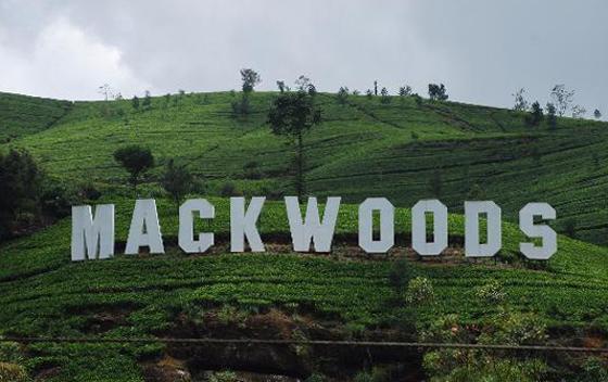 Чайный центр Mackwoods Labookellie