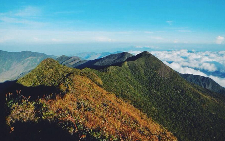 Гора Алькон