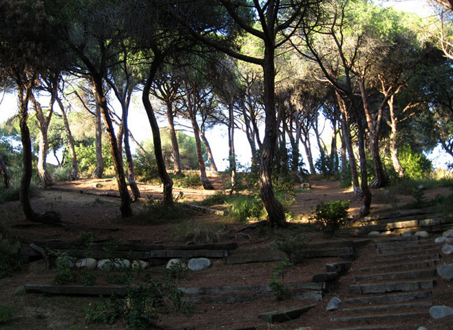 Парк Далмау